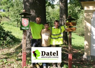 Ošetření památných stromů Krkonoše 2015