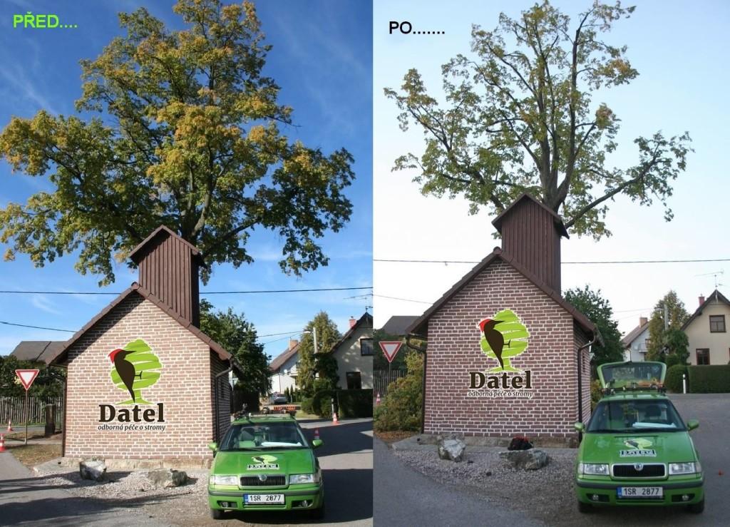 Datel odborné ošetření stromů v Krkonoších