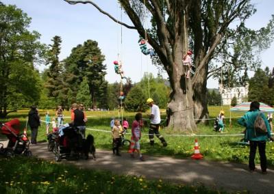 Lezení po stromech pro děti i pro dospělé