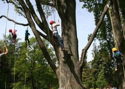 Lezení v korunách stromů Datel arboristika Krkonoše (4)