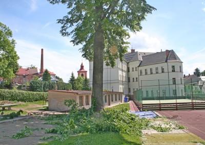 Ošetření stromů ZŠ Komenského Jilemnice