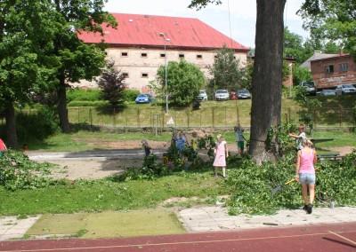 Podstromáčci ze Škola Montessori NAHORU